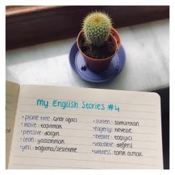My English Stories #4 | Lia 🌳