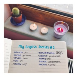 My English Stories #5 | Sally's Diary